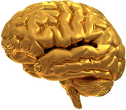 brain bank appeals for donors